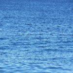 東京オリンピックのサーフィンで波がフラットのときはどうするの?ウェーブプールでの開催も?