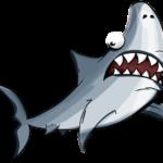 サーフィン中のサメよけ対策は必要?被害動画や日本での事故確率についても